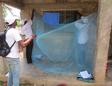 Insecticide-treated nets delivered in Mozambique