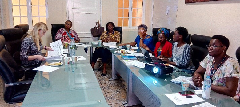 Stakeholders meet once a month to coordinate around procurements, advocacy and other reproductive health-related priorities.