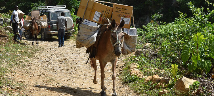 Donkeys carry USAID-labeled boxes.