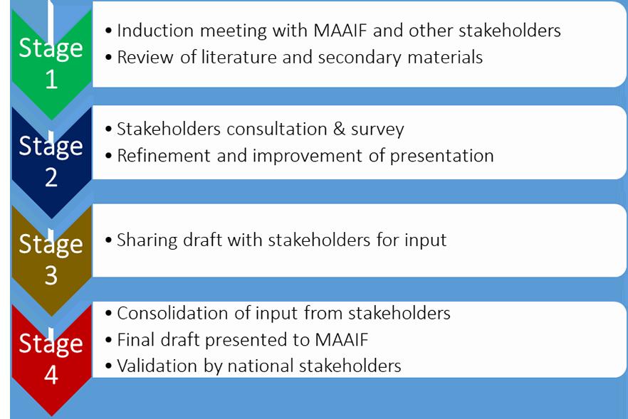 Process of development of the EVML